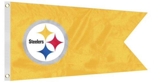 King Of Carts 12 X 18 Pittsburgh Steelers Flag Flags